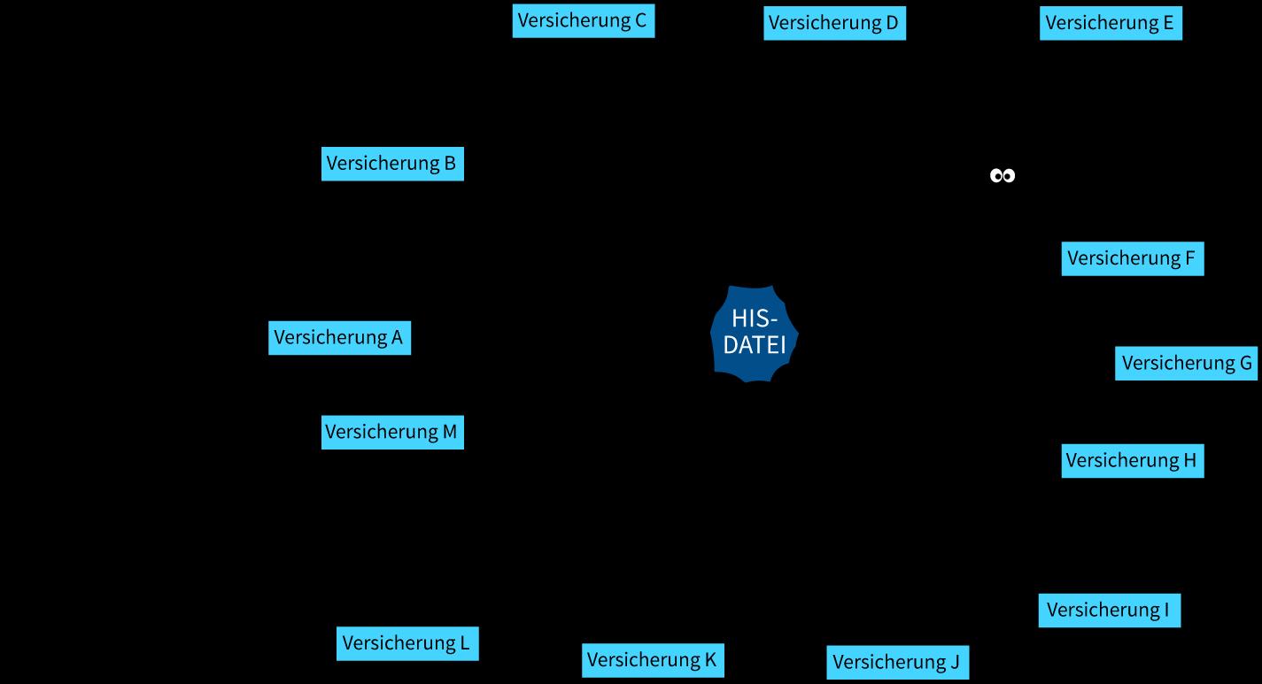 HIS-Vernetzung_Spinne2